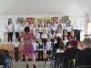 Ének-zenei fesztivál